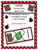 Ladybug Number Puzzles 1-20