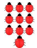 Ladybug Number Recognition