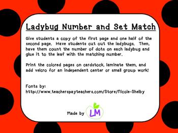Ladybug Number Set Match