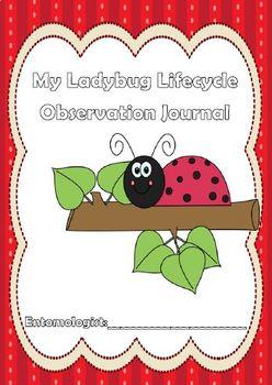 Ladybug Observation Journal