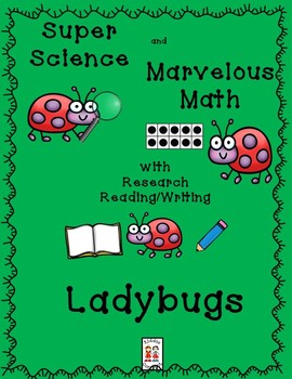 STEM and Ladybugs-science, technology, engineering, art and math activities