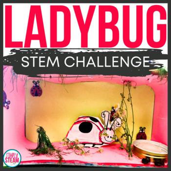 Ladybug Life Cycle STEM & Craft Ladybugs