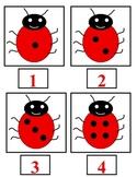 Ladybug Sets 1-20