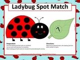 Ladybug Spot Match