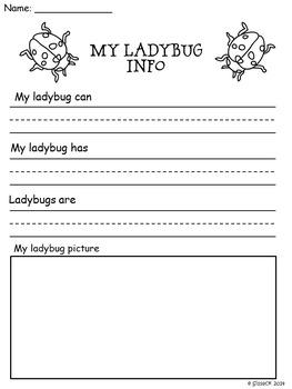 Ladybug Study and Life Cycle