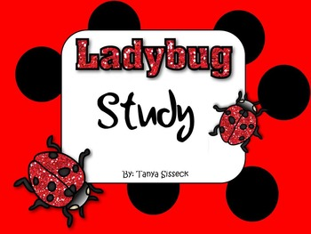 Ladybug Study and Life Cycle