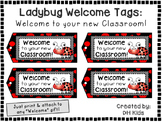 Ladybug Tags - Welcome to your new Classroom - Welcome Tags  - Treat Bag Tags