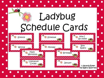 Ladybug Theme Schedule Cards
