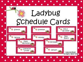Ladybug Theme Schedule Cards
