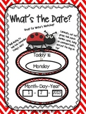 "Ladybug Theme ""What's the Date"" Wall Display for Writer's"