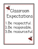 Ladybug Themed Classroom Expectations Poster