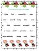 Ladybug Transition Word Posters