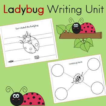 Ladybug  Unit  Informational Writing and Math Mini Unit