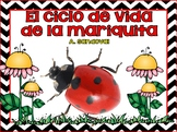 Ladybug Unit in Spanish Las mariquitas