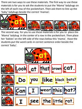Ladybug Word Family Pocket Chart Activities