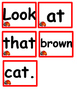 Ladybug Word Family Pocket Chart Activities