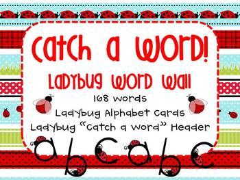Ladybug Word Wall