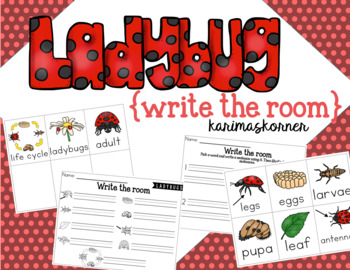 Ladybug Write the Room