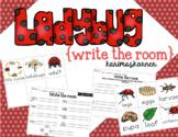 Ladybug Write the Room