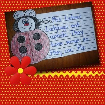 Ladybug Writing Project