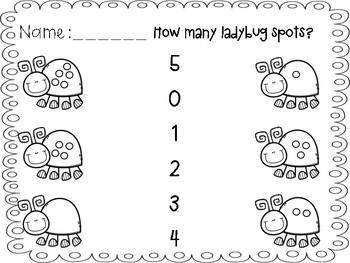 Ladybug count and match