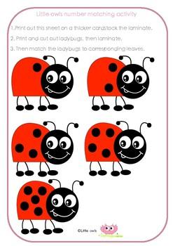 Ladybug matching activity