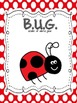 Ladybug packet