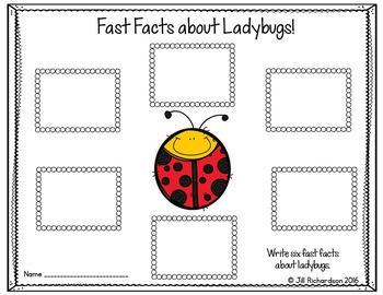 Free Ladybug Writing