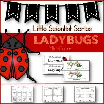 Ladybugs (Emergent reader/graphic organizers)