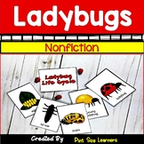 Ladybug Science Unit and Activities | Lady Bug Life Cycle & Insect Body Parts