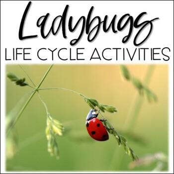 Ladybugs Activity Pack