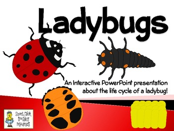 Ladybugs ~ An Interactive PowerPoint Presentation of their