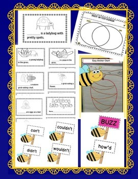Ladybugs, Butterflies & Bee Friends {JUMBO INSECT UNIT}