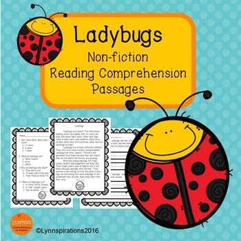 Ladybugs Reading Comprehension