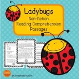 Spring Reading Comprehension Passage - Ladybugs