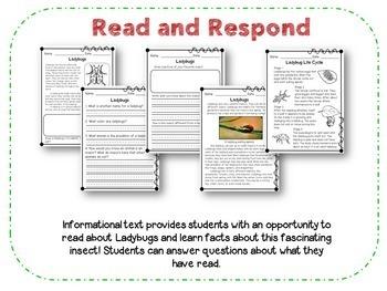 Ladybugs  (Reading, Writing, Researching)