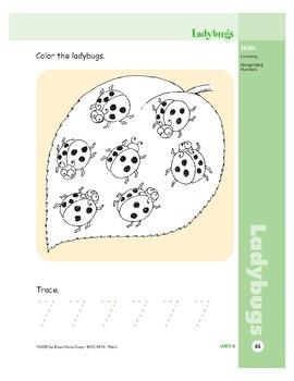Ladybugs (Skill Sharpeners Math)