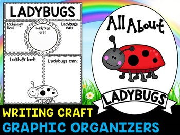 Ladybugs - Writing Craft and Graphic Organizers SET, Book Template, Insects