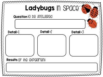 Ladybugs Nonfiction Reading