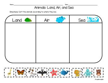 Land, Air, and Sea Animals