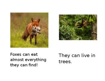 Land Animal Books