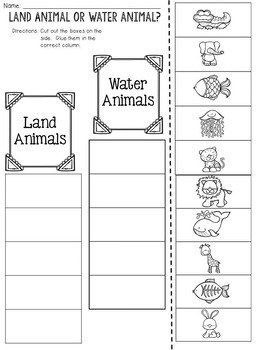 Land Animal or Water Animal? Cut and Paste Sorting Activity