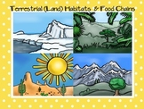 Terrestrial-Land Habitats and Food Chains
