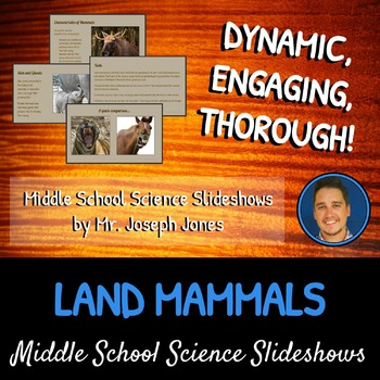 Land Mammals: A Life Sciences Slideshow!