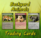 Land, Sea & Air Animals - Trading Cards Combo