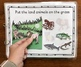 Land or Water Animal? An Adaptive and Interactive Book About Animals