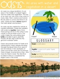 Landforms Reading Passage: Oasis