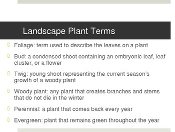 Landscape Terms and Plants Learning Styles Power Point Lesson