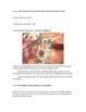 LA Activity~Native American Proper Noun Play~Marzano & Common Core