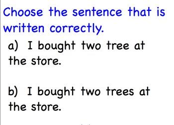 Language Arts Lessons Second Grade